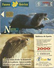 2000+100 PTA. Fauna ibérica. Cabitel. Nutria (lutra lutra).
