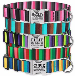 Personalized-Dog-Collar-Engraved-Side-Release-Buckle-Nylon-Collars-for-Dogs-S-L