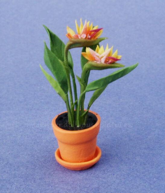 Miniature Dollhouse Bird of Paradise Flower Plant  1:12 Scale New