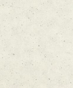 vlies tapete factory 438024 rasch sicht beton optik muster stein mauer grau 4000441438024 ebay. Black Bedroom Furniture Sets. Home Design Ideas