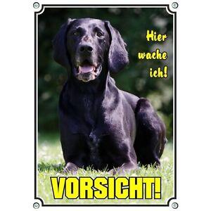 Bouclier pour chien - Bouclier en métal allemand 1.5mm résistant aux UV