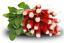 150-Graines-bio-RADIS-Long-de-18-jours-Certifie-AB-BIO-0002 Indexbild 1