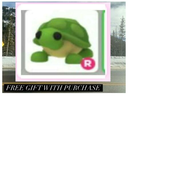 Original Photograph With Adopt Me Turtle ride Gift   eBay