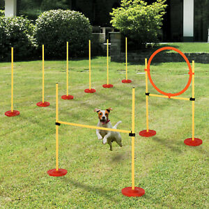 PawHut-Outdoor-3-PC-Dog-Pet-Agility-Training-Garden-Starter-Obstacle-Set-for-Dog