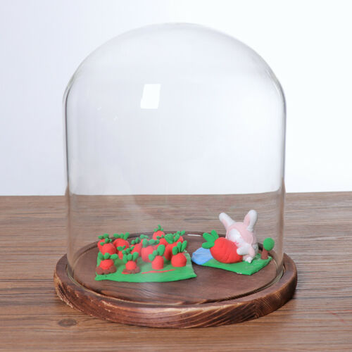 2pcs 7x12cm Klarglas Display Dome Cloche Glocke mit Holzsockel Schwarz