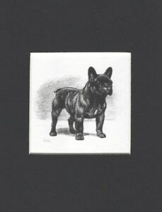 French-Bulldog-Dog-Art-Print-Megargee-MATTED