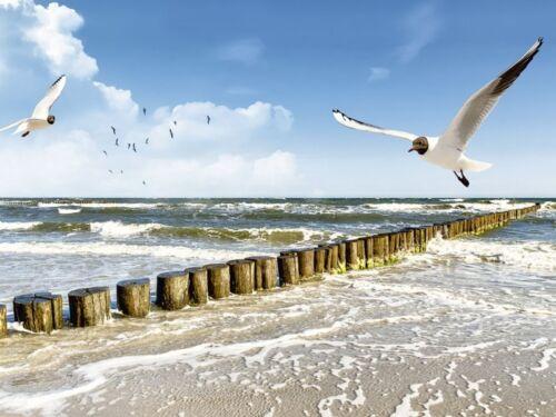 Poster oder Leinwand Bild DeVIce Landschaften Gewässer See Fotografie Blau B9JP