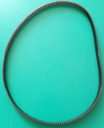 Cinghia di ricambio dentata 570 mm x 8mm