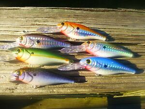 Details about RAPALA SHAD RAPS SR-7 CRANKBAIT SET 6 HOLOHRAPHIC CUSTOM  PAINTED FISHING LURES