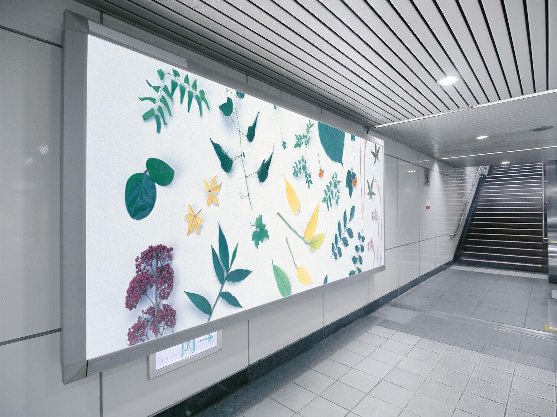 3D Leaves 4175 Wallpaper Murals Wall Print Wallpaper Mural AJ WALL UK Lemon