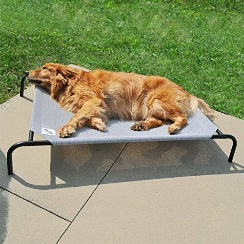 Large Dog Bed Coolaroo Elevated Pet Cot Indoor Raised Outdoor Steel Frame