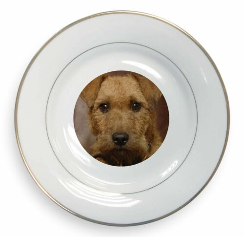 Lakeland Terrier Dog Gold Rim Plate in Gift Box Christmas Present, ADLT2PL