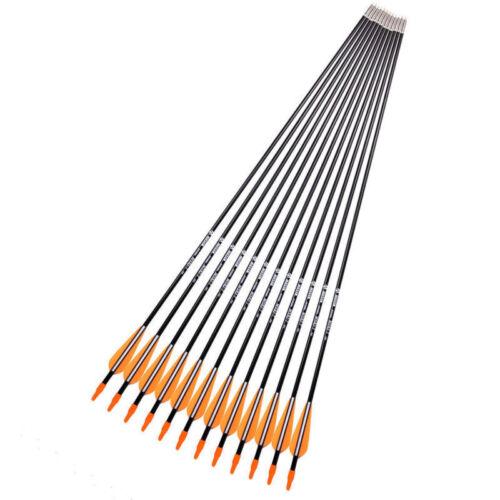 12pc fibre de verre Flèches la cible archer ARROW Hunting For Bows