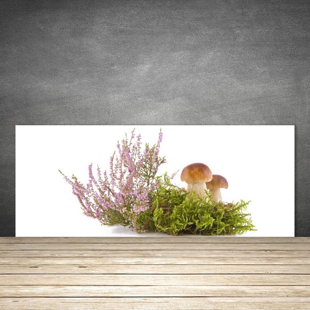 Crédence de cuisine en verre Panneau 125x50 Floral Champignons