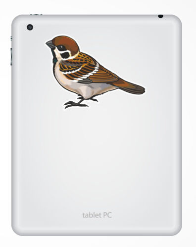 2 x 10cm Small Brown Bird Vinyl Sticker Decal Car Laptop Tablet Garden #5841