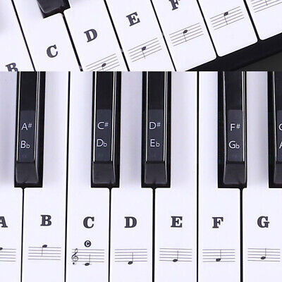 Music Learning Piano Keyboard Notes Sticker Beginner Guide Label Decal  Musical | eBay