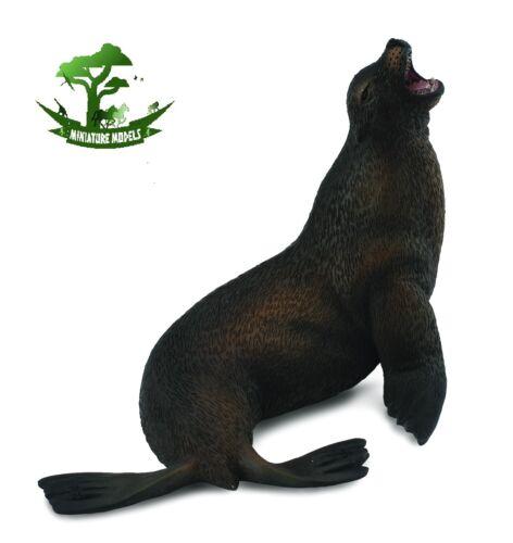Sealife Marine Ocean Model Toy NEW SEA LION CollectA 88455