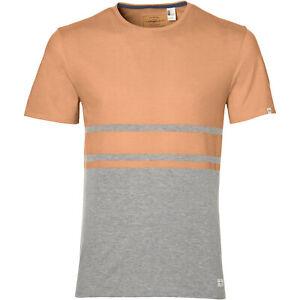 O'Neill T-Shirt Shirt LM VENICE STRIPE T-SHIRT orange meliert