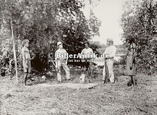Dr Stirling, alligator shooting, Daly River Photograf Tiere Neger Photo S 169