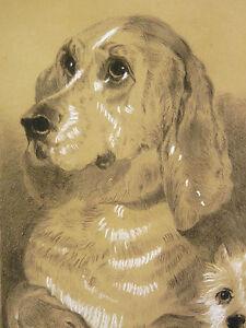 Edwin-Henry-Landseer-1802-1873-nach-Dignity-And-Frechheit-Kohlezeichnung-XIX