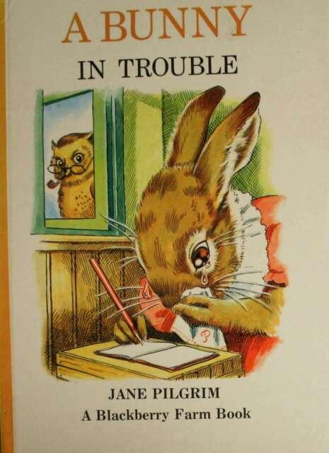 Bunny in Trouble (Blackberry Farm S.), Pilgrim, Jane, Very Good Book