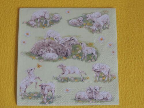 20 Serviettes moutons agneaux 1 boîte neuf dans sa boîte d/'agneau de nombreux animaux Motif Serviettes AMBIE