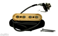 """Electric Delta"" 4-pole Single Coil Cigar Box Guitar Pickup by Foundry-Tone"