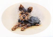 YORKSHIRE TERRIER YORKIE DOG FINE ART PRINT - PUPPY