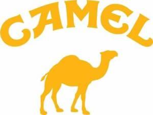Rally Motorsport Exterior Vinyl Decals Motor Sport Camel Trophy = No Background