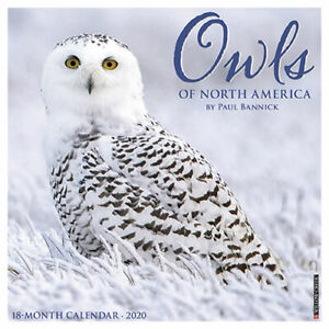 Willow-Creek-Owls-2020-Mini-Calendar-7-034-X7-034-w
