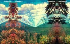 HY483 Art Poster Hot Tame Impala Psychedelic Rock Music Star Cover Silk Print