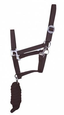 Sale Economy Equestrian Horse Nylon Halter Headcollar /& FREE Leadrope 2 Tone
