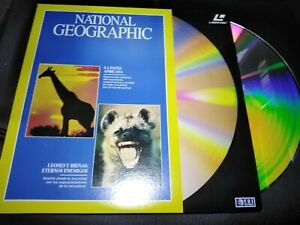 National-Geographic-Laser-Disc-African-Wildlife-Y-the-Lions-Y-Hyenas