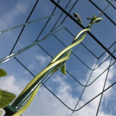 Wall Climbing Plant Support Trellis Frame 2 x Large Metal Garden Trellises 1.8m high