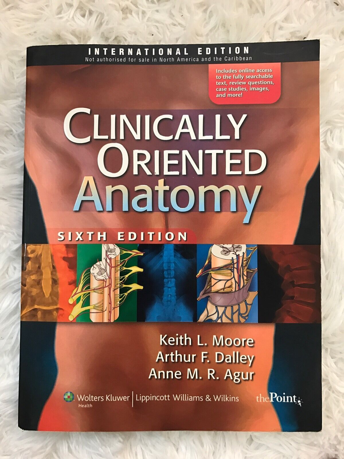 Clinically Oriented Anatomy by Keith Moore [152500448759] - $30.00 ...