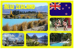 Nouvelle-Zélande - Souvenir Nouveauté Réfrigérateur Aimant - Sites / Villes -
