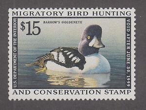 US Sc RW65 MNH. 1998 $15 Barrow's Goldeneye, Duck Stamp VF