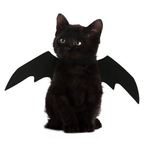 Animal-Pet-Dog-Cat-Bat-Vampire-Halloween-Black-Fancy-Dress-Costume-Outfit-Wings