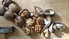 Greek Organic Walnut Kernels 480g (17oz) Raw Nuts Premiun Quality - Harvest 2016