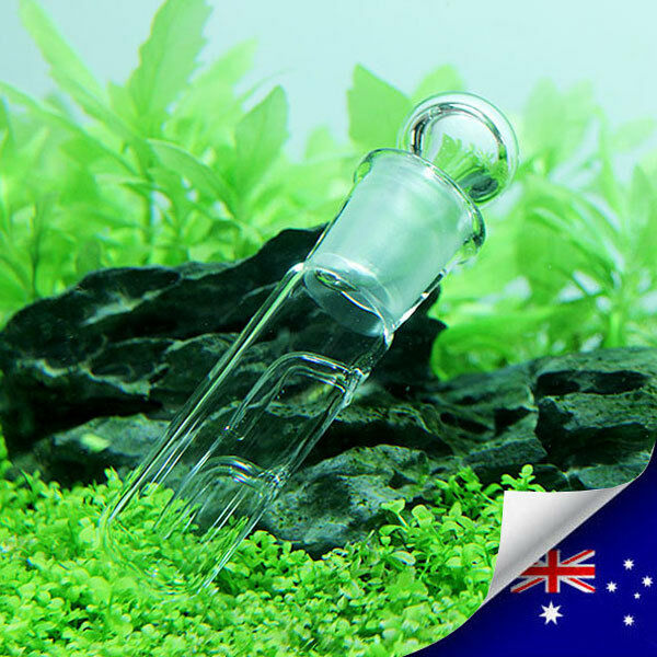 High Quality Aquarium Glass Worm Catch Pen Planaria Trap Worm Catcher