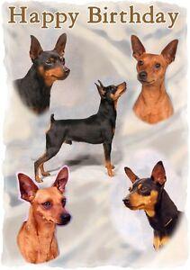 mini pincher dog design a6 textured birthday card bdminpin 2