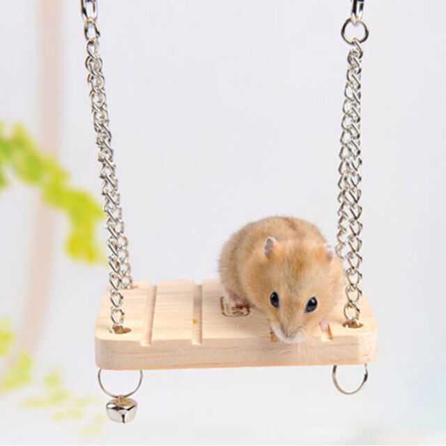 New Hamster Toy Hanging Swing Rat Parrot Wooden Natural Exercise Funny ET