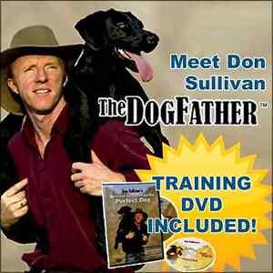 Dog Training Dvd As Seen On Tv
