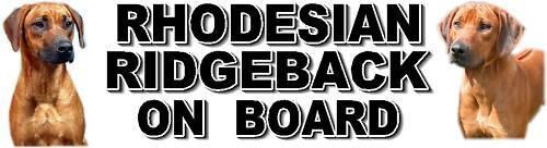 RHODESIAN RIDGEBACK ON BOARD Car Sticker By Starprint
