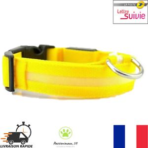 Collier-Nylon-Lumineux-a-Led-Jaune-pour-Chien-ou-Chat-XS-S-M-L-XL-Neuf-FR