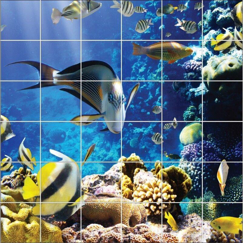 Stickers carrelage mural déco poissons exotique 1899