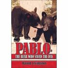 Pablo, the Bear Who Saved the Day by Harold Levingston (Paperback / softback, 2007)