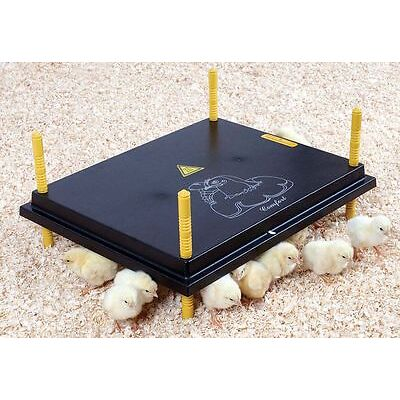 Wärmeplatte 40 x 50 cm, 50 Watt