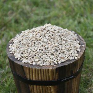 Sunflower Heart Chips for Wild Birds - Bulk Options - High Quality
