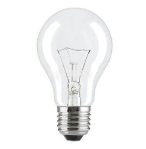 E27 12v 40w 60w Low Voltage Light Bulb Standard Incandescent Warm White Es Ebay